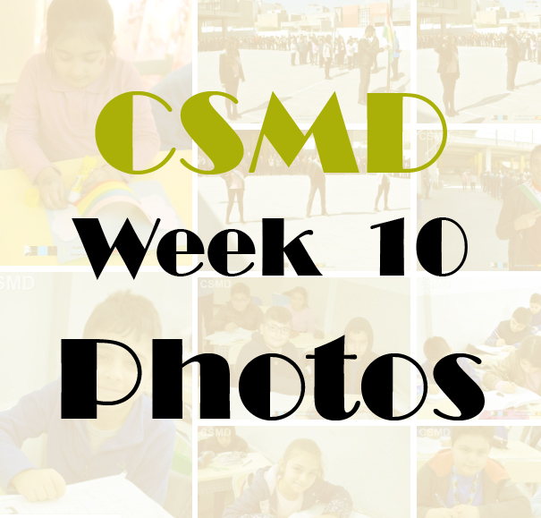 CSMD PH2 – week 10 photos