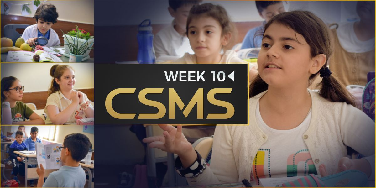 CSMS PH1 – Week 10 Photos